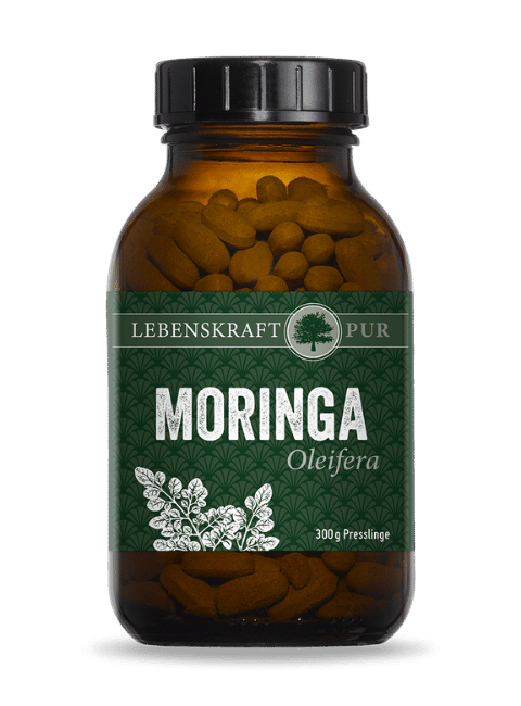 Moringa Oleifera von Lebenskraft Pur