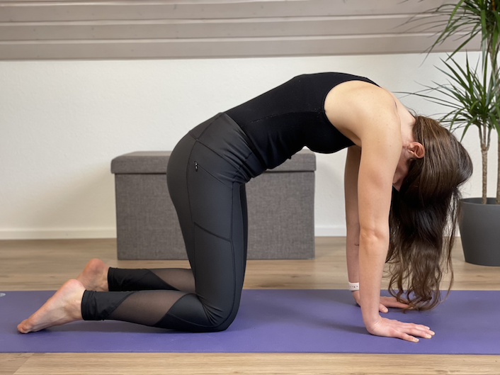 Katze Yogaübung für den Rücken