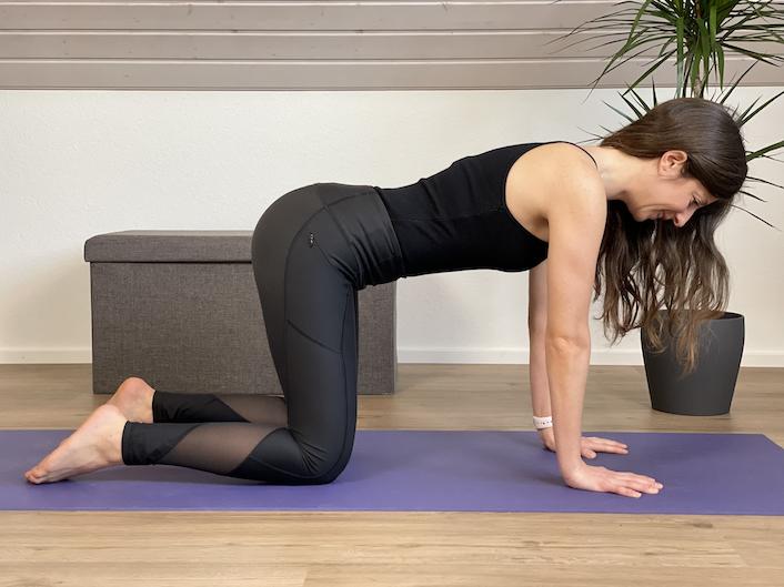 Vierfüßlerstand Yogaübung für den Rücken